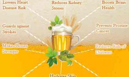 Польза пива для организма при умеренном его потреблении